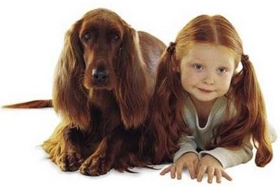 crvena curica i pas