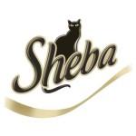 Sheba_royalshop.rs